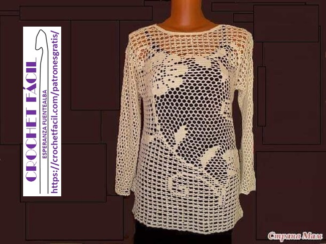 Blusa Crochet Filet con Mangas